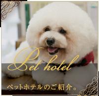 ペットホテルのご紹介